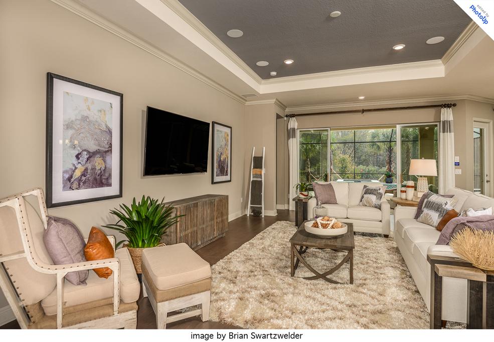 professionally edited living room image